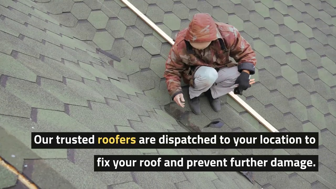 MyVidster | roofryders